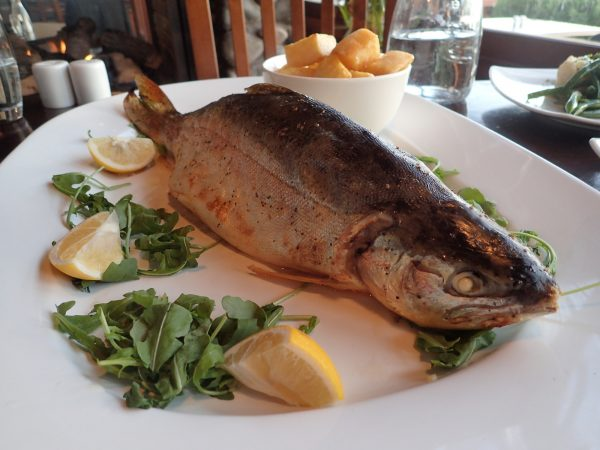 My catch, all cooked up by The Waterside Restaurant & Bar